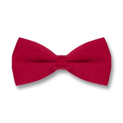 Red Wine Polyester Solid Skinny Bow Tie