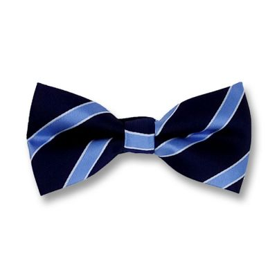Midnight Blue, Blue Ribbon and White Polyester Striped Butterfly Bow Tie