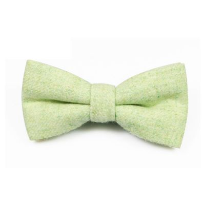 Mint green Cotton Solid Butterfly Bow Tie