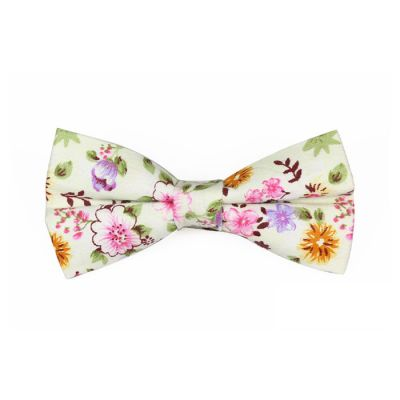 SeaShell, Mahogany, Pink, Champagne and Slime Green Cotton Floral Butterfly Bow Tie
