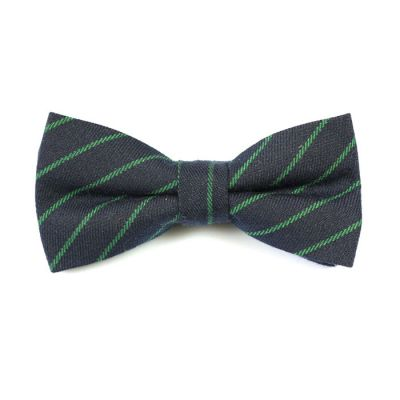 Dark Slate Grey and Green Apple Cotton Striped Butterfly Bow Tie