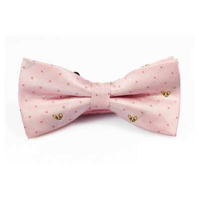 Misty Rose, Brown and Saffron Polyester Novelty Butterfly Bow Tie