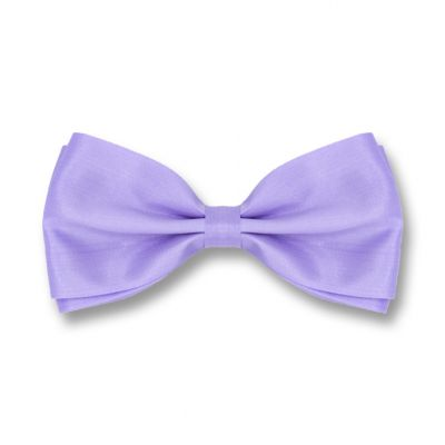 Purple Mimosa Polyester Solid Skinny Bow Tie