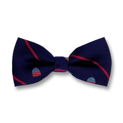 Midnight Blue, Chilli Pepper and Day Sky Blue Polyester Novelty Butterfly Bow Tie