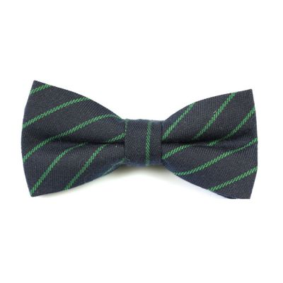 Midnight Blue and Frog Green Cotton Striped Butterfly Bow Tie