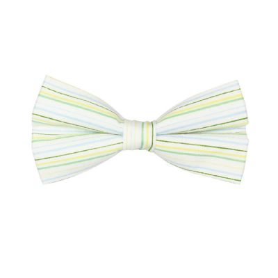 White, Mint green, Hummingbird Green and Orange Cotton Striped Butterfly Bow Tie