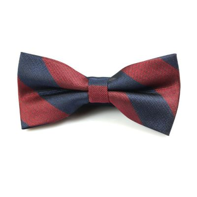 Midnight and Midnight Blue Polyester Striped Butterfly Bow Tie