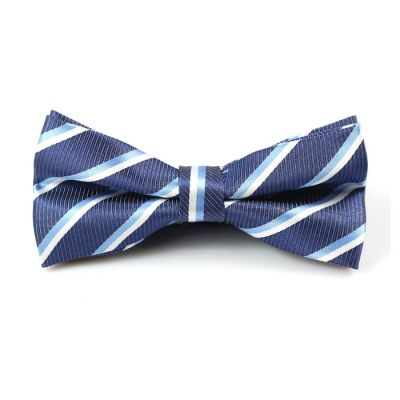 Light Blue, White and Medium Purple Polyester Striped Butterfly Bow Tie