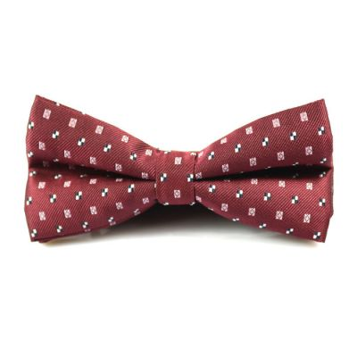 Midnight, Light Coral and White Polyester Novelty Butterfly Bow Tie